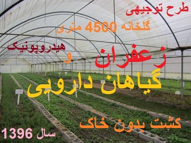 طرح توجیهی احداث گلخانه هیدروپونیک زعفران و گیاهان دارویی سال 96